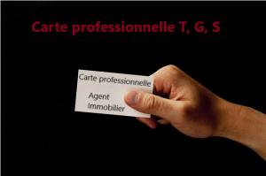 Read more about the article Profession immobilière : carte professionnelle T, G et S